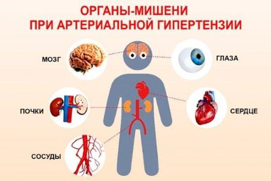 Органы-мишени при АГ